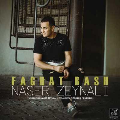 دانلود آهنگ جدید ناصر زینلی بنام دلت نگیره