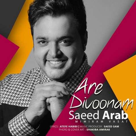 دانلود آهنگ جدید سعید عرب بنام آره دیوونم