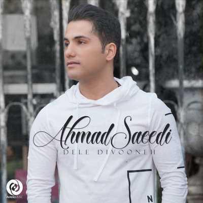دانلود آهنگ جدید احمد سعیدی بنام دل دیوونه