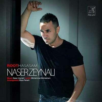 دانلود آهنگ جدید ناصر زینلی بنام روت حساسم