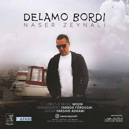 دانلود آهنگ جدید ناصر زینلی بنام دلمو بردی