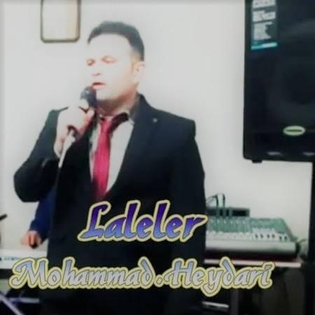 دانلود آهنگ محمد حیدری بنام لاله لر