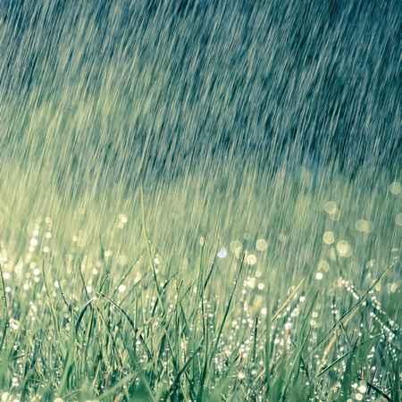 دانلود آهنگ ببار ای باران امید به دل های خسته این مردمان