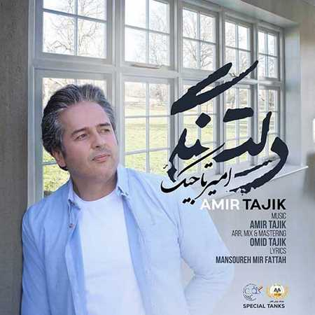 دانلود آهنگ امیر تاجیک دلتنگی mp3